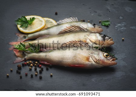 Perch stock images royalty free images vectors for Aromatic herb for fish