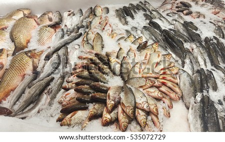 fresh fish with ice in supermarket