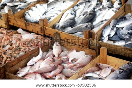 Fresh fishes in a market - stock photo