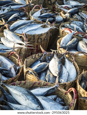 Fresh fishes on basket for sale in a beach market - stock photo