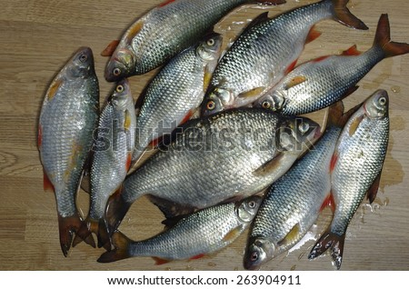fresh fishes on wooden board background - stock photo