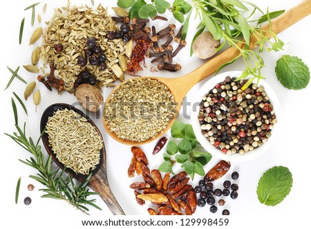 fresh flavoring herbs and spices on white background - stock photo