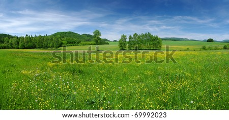 Fresh flowered meadow - stock photo