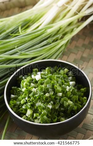 Fresh food ingredients,green onion - stock photo