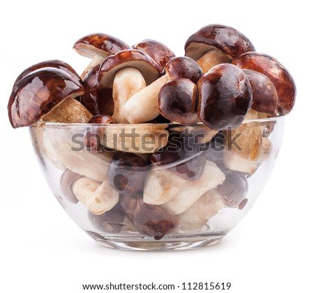 Fresh forest mushrooms in tray over white background, with clipping paths - stock photo