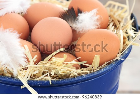 Fresh free range eggs in a nest of straw. - stock photo