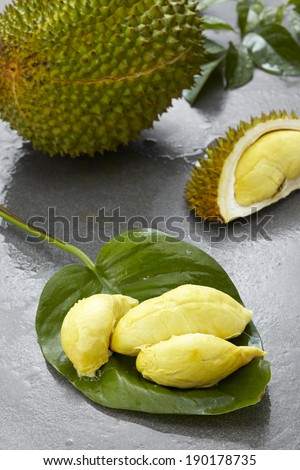 Fresh fruit Durian, on the characteristic style background