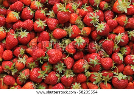 fresh fruits - juicy strawberries - stock photo