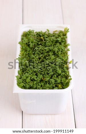 Fresh garden cress in white plastic box on wooden table - stock photo