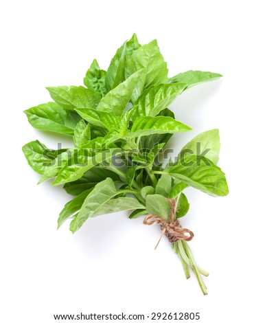 Fresh garden herbs. Green basil. Isolated on white background - stock photo