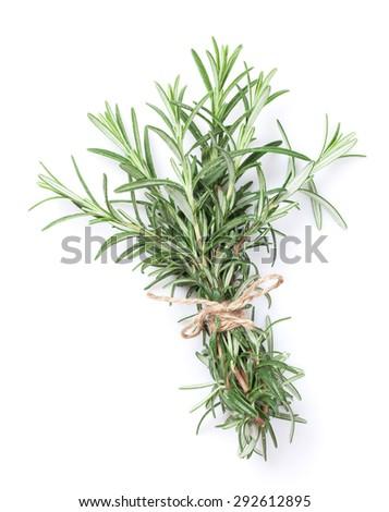 Fresh garden herbs. Rosemary. Isolated on white background - stock photo