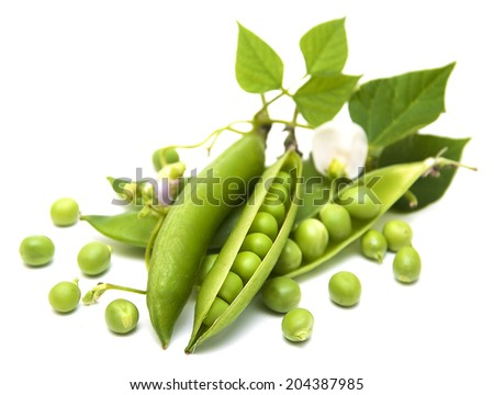 Fresh Garden Peas  on a  white  background - stock photo