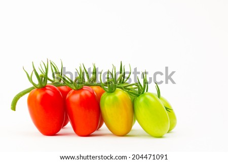 Fresh garden picked grape tomatoes, ripening on stem, on white background with shadows - stock photo
