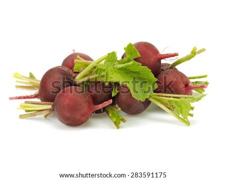 Fresh garden radish on a white background - stock photo