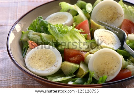 Fresh garden salad with egg, avocado and tomato in brownstone dish for a healthy low calorie lunch. - stock photo