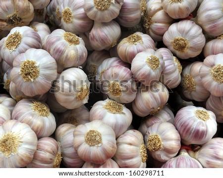 Fresh Garlic Cloves at a Farmers Market in France - stock photo