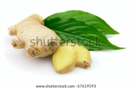 Fresh ginger with leaves - stock photo