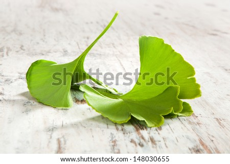 Fresh ginkgo biloba leaves isolated on white wooden textured background. Traditional natural alternative medicine. - stock photo