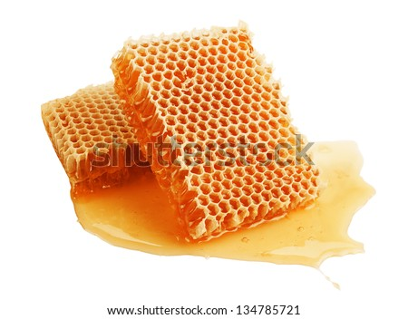 fresh golden honeycomb isolated on white background - stock photo