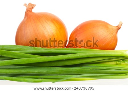 Fresh golden onion with green sprouts over white background - stock photo