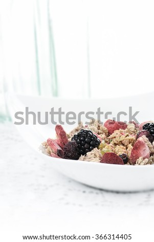Fresh granola muesli with dried fruit and blackberries against a bright, light background with generous accommodation for copy space. The perfect image for your breakfast menu cover design. - stock photo