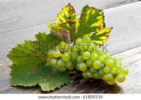Fresh grape on the table. Shallow DOF - stock photo