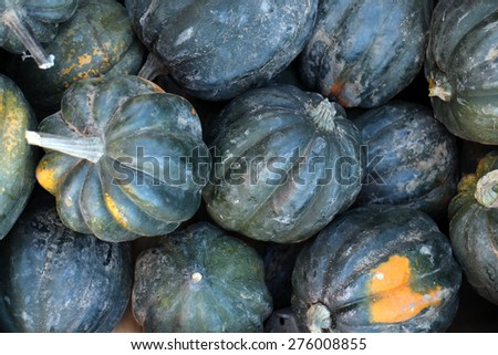 fresh green acorn squash at the market place - stock photo