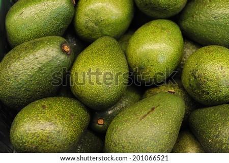 Fresh green avocado in market - stock photo