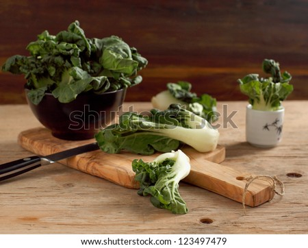 Fresh green bok choi. (Chinese green vegetable) - stock photo