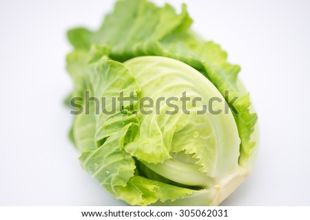 Fresh green Brussel sprout on for food ingredient on white background - stock photo