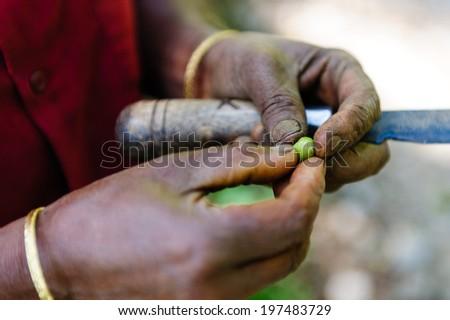 Fresh green coffee grain in the hands of a farmer - stock photo