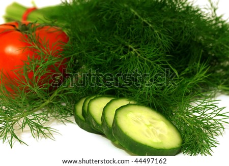 fresh green dill, tomato and cucumber - stock photo