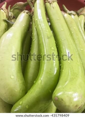 Fresh Green egg plant selling in the Thai market - stock photo
