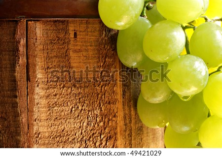 Fresh green grapes cascading from rustic wooden barrel.  Sunlit macro with shallow dof. - stock photo
