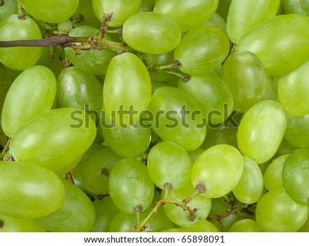 fresh green grapes , for backgrounds