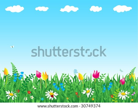 Fresh green grass and wild flowers horizontal background ( for vector EPS see image 30749371 )