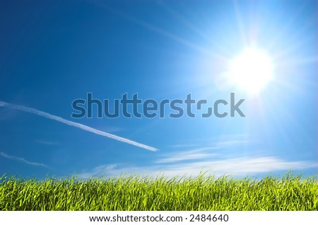 Fresh green grass on bright blue sunny sky background - stock photo