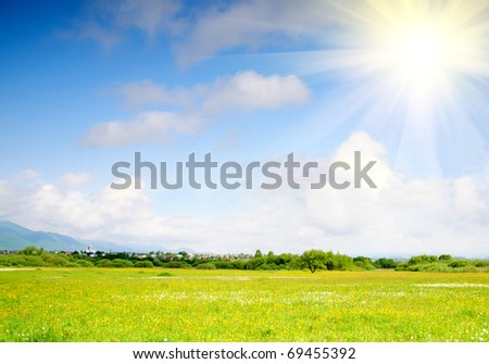 Fresh green grass on spring meadow with bright blue sky - stock photo