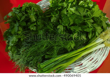 Fresh green herbs in the wicker basket - parsley, coriander, green onion, dill on red background