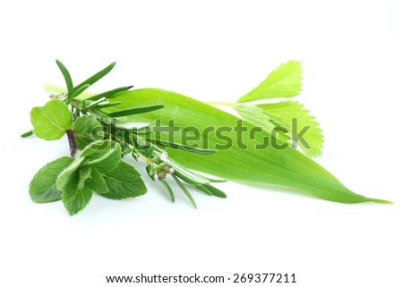 Fresh green herbs on white background - stock photo