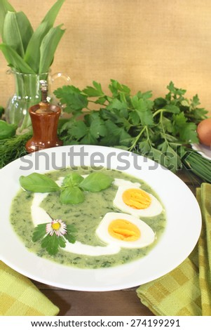 fresh green herbs soup with eggs and a dollop of cream - stock photo
