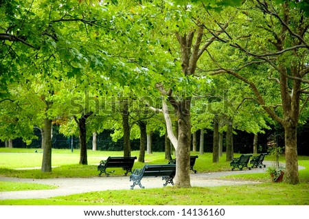 Fresh green in park - stock photo
