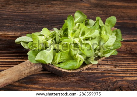 Fresh green lamb's lettuce salad on wooden spoon on old wooden vintage background. Fresh salad, rustic vintage country style image. - stock photo