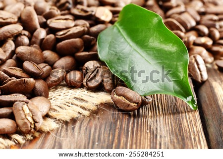 fresh green leaf and decoration of coffee  - stock photo