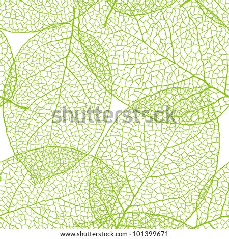 Fresh green leaves background - stock photo
