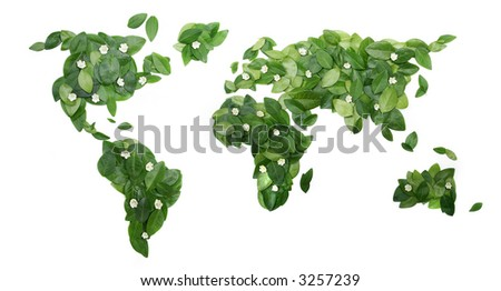 Fresh green leaves in the shape of World on a white background. - stock photo