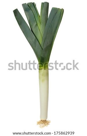 Fresh green leek isolated on white background - stock photo