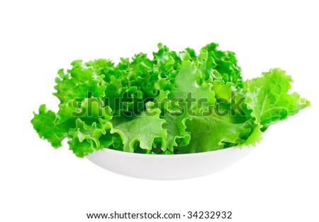 Fresh green lettuce - stock photo