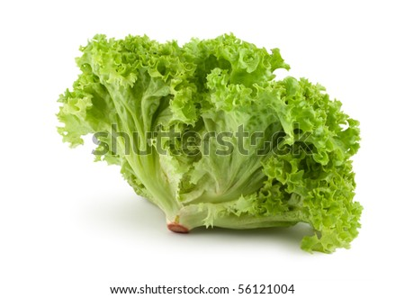 Fresh green lettuce isolated on a white background - stock photo