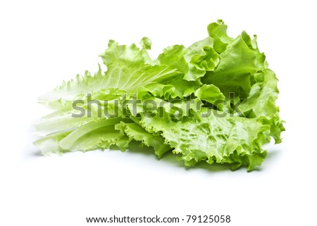 fresh green lettuce leaves isolated on white - stock photo
